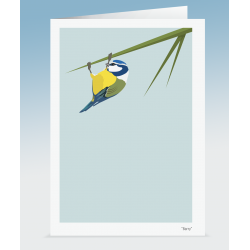 """Barry"" - Blue Tit (Card)"