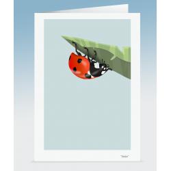 """""""Dottie"""" - Ladybird (Card)"""