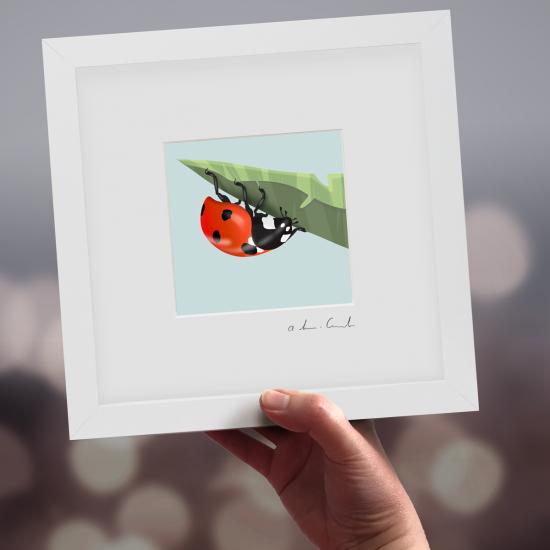 "Framed Mini ""Dottie"" - Ladybird"